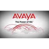 Плата внутренняя дочерняя Avaya IPO IP500 TRNK PRI UNVRSL SNGL (700417439)